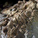 , Javorinka, Slovenská speleologická spoločnosť, Slovenská speleologická spoločnosť